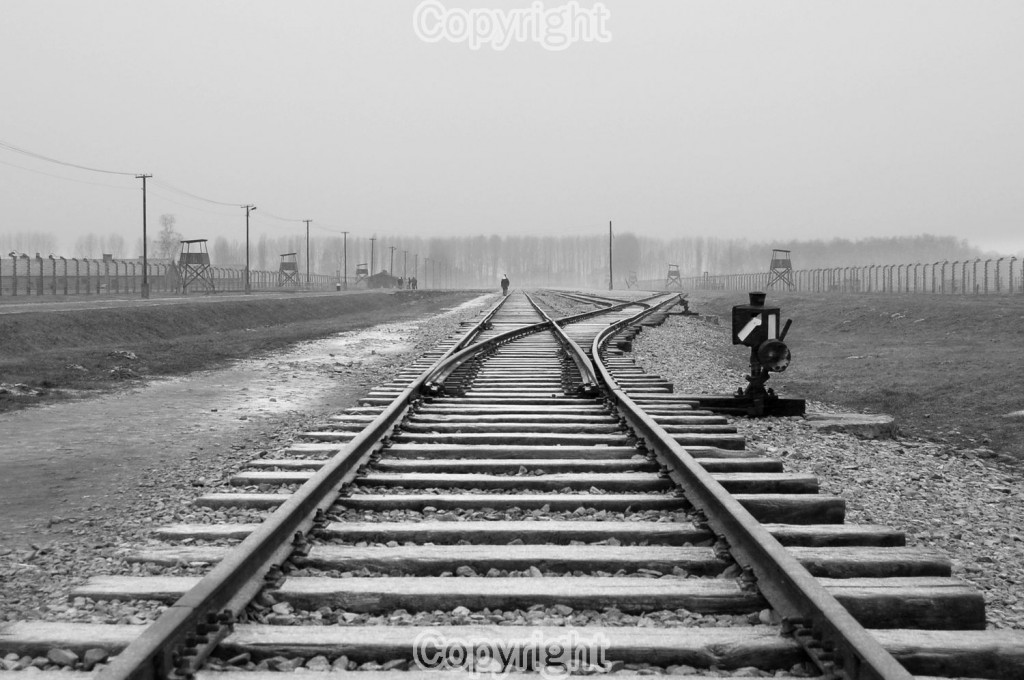 Mark Spraggon, Winter at Auschwitz-Birkenau. Equipment: Nikon D50 D-SLR & 18-55mm Lens. ISO: 400 Aperture: f5.6