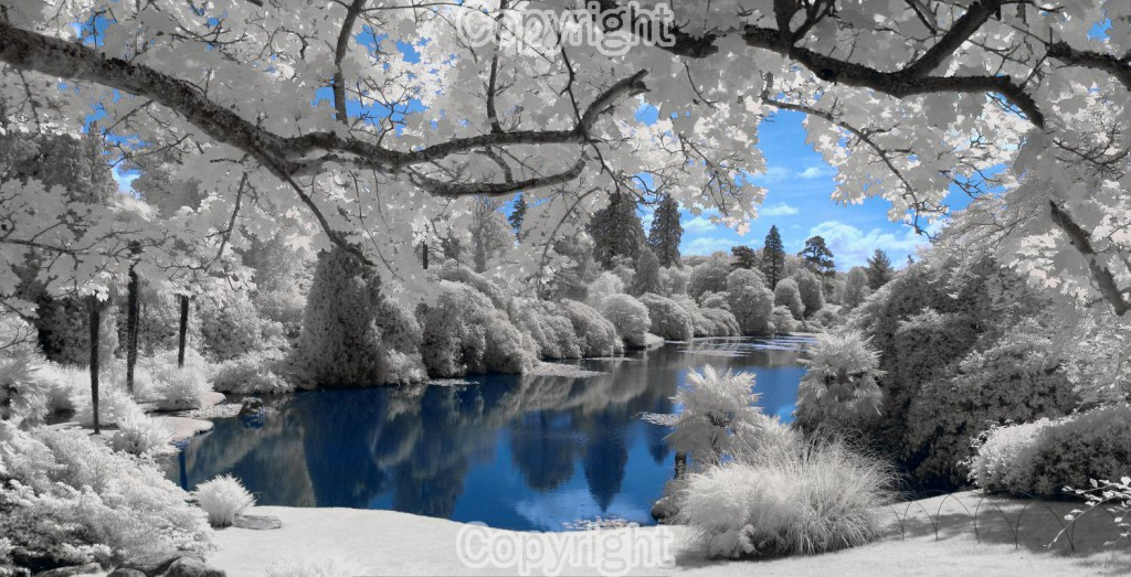 Mark Bond: Lake Infrared Equipment: Canon PowerShot A480
