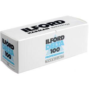 Ilford Delta 100 120 Black & White Print Film