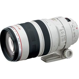 Canon EF 100-400mm f4.5-5.6 L IS USM Lens