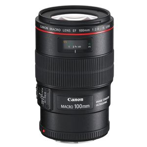 Canon EF 100mm f2.8 L IS Macro USM Lens