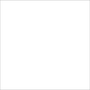 Dorr Super White Paper Background 1.35x11m