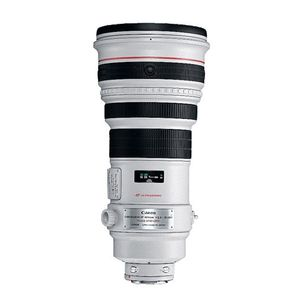 Canon EF 400mm f2.8 L IS II Lens
