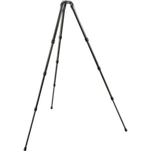 Gitzo GT2542LS Series 2 Systematic Long Tripod Legs