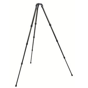 Gitzo GT2542S Series 2 6X  Carbon Systematic Tripod Legs
