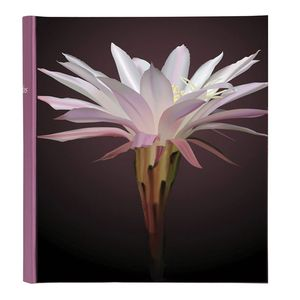 Botanics Mink Traditional Photo Album - 100 Sides
